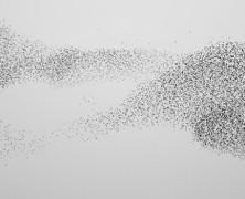 Startup Swarm