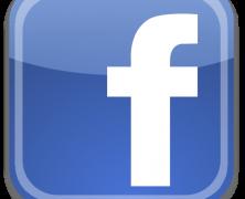 Startup Instagram / Facebook