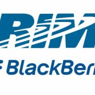 New blackberry phone 9800